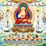 Tìm Hiểu Về Đức Phật A Di Đà Và Cõi Tây Phương Cực Lạc