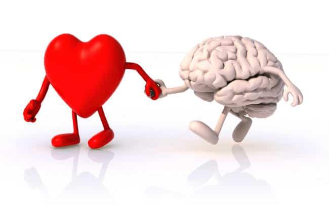 trái tim và tâm trí