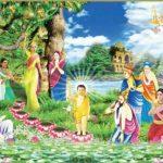 Phật Giáo Việt Nam Đăng Cai Tổ Chức Đại Lễ Phật Đản Liên Hợp Quốc 2019
