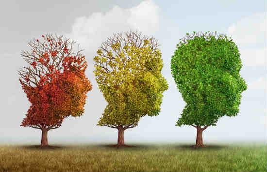 10 mẹo giúp bạn cải thiện trí nhớ của mình