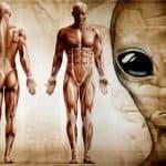 Con Người Đến Từ Đâu? – Nguồn Gốc Của Loài Người