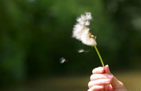 học cách chấp nhận để hạnh phúc hơn