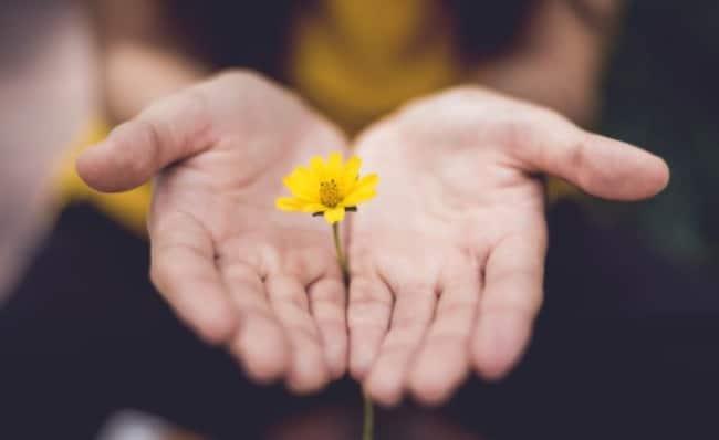 lòng biết ơn là gì, lời phật dạy về lòng biết ơn